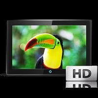Высокое качество изображения, разрешение Full HD